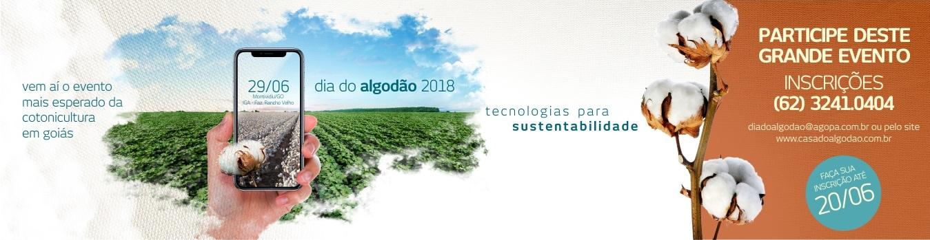 banner_dia_do_algodao